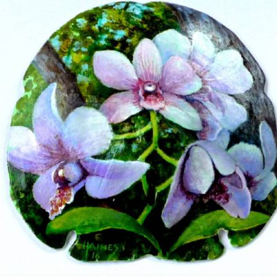 Orchid200