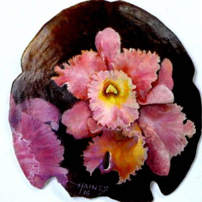 Orchid400